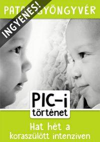 Patak Gyöngyvér: PIC-i történet ingyenes